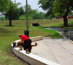 Dog Boarding Cedar Hill Tx